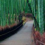 17 مکان دیدنی ژاپن
