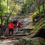 5 تا از بهترین مکان های پیاده روی در ژاپن